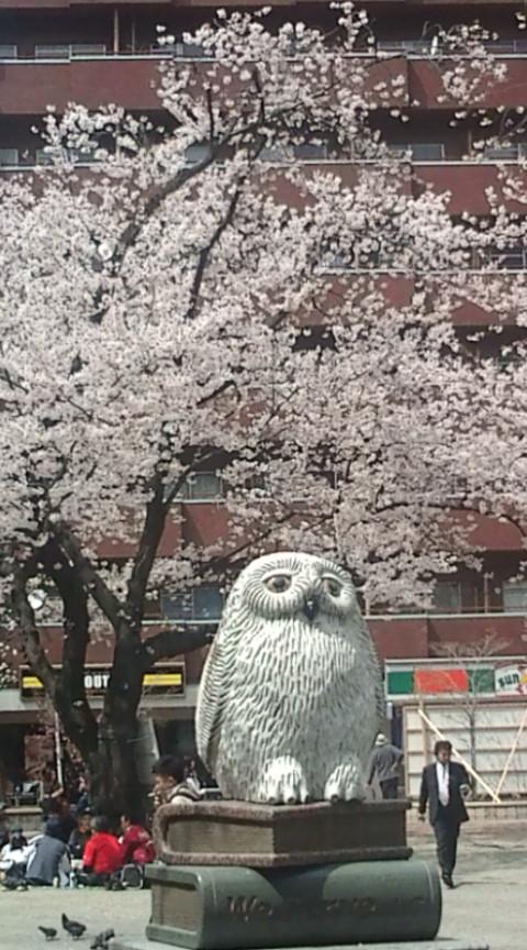 東京・池袋にて…。