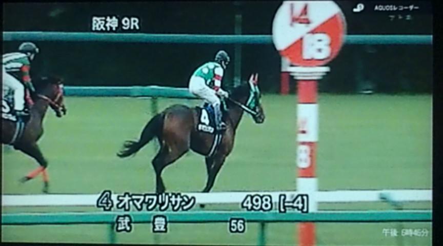 今日行われた阪神競馬9レースで…。